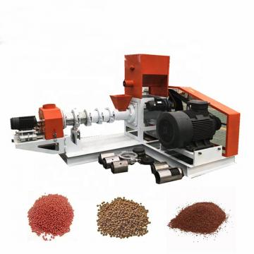 Snacks Food Machine Double Screw Extruder (SLG70)